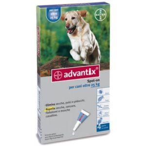 Miglior Antiparassitario per cani contro pulci e zecche