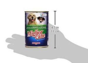 Il Miglior Mangime per Cani da Scegliere: i 5 Migliori Prodotti