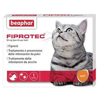 Collari Antipulci per Gatti migliori ed economici