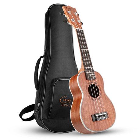 Come scegliere un ukulele sul mercato